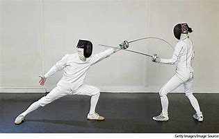 Image result for fencing images